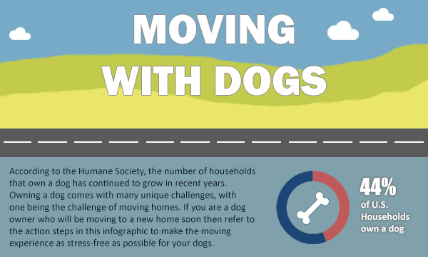 Moving to Scottsdale with Dogs